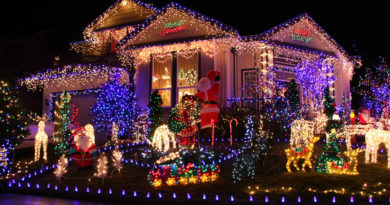 All Things Local – CHRISTMAS SUBURBS